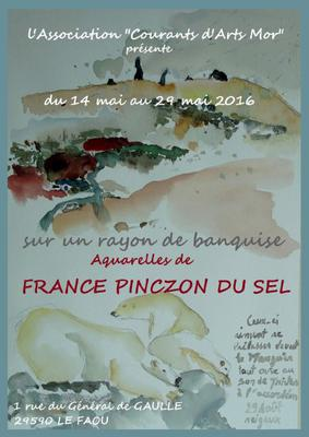 Affiche web expo France Pinczon du Sel mai 2016