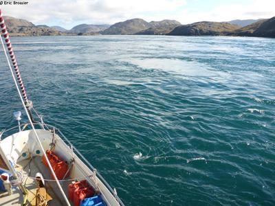 Entree McLelan Strait Labrador