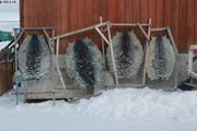 Peaux de phoques