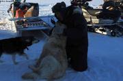 Jaypootie retrouve ses chiens egares depuis 3 semaines