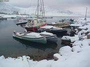 Vagabond dans le port de Qikiqtarjuaq