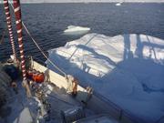 Gros glacon visite Vagabond au mouillage