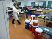 Arrivee de l'eau au labo pour filtrations
