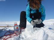 Aude recupere flacons apres 24h incubation sous la glace