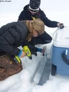 Niki et Margaux mesurent temperature dans carotte de glace