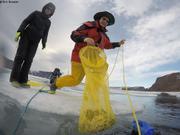 Branwen et Jochen recuperent recolte coralline
