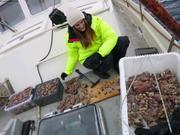 Jessica prepare 150 echantillons coralline