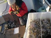 Jessica prepare supports pour echantillons coralline