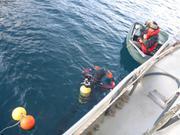 Debut plongee installation manip hivernale coralline Arctic Bay