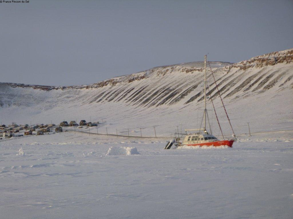 [Imagen: 250_20200309_Vagabond_non_loin_de_Arctic...du_Sel.JPG]