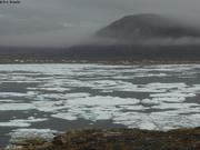 Glaces devant Qikiqtarjuaq