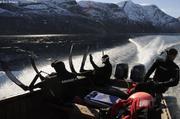 Recherche de baleines fiord Pitchforth