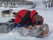 Depannage bouee Ukiuq Sentinelles des glaces