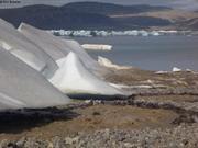 Glacier et torrent de fonte