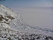 Entree du fjord Grise