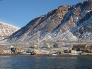 Vagabond sur la plage de Grise Fiord pour l hiver ©EB