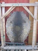 Peau du phoque du 10 juin ©EB