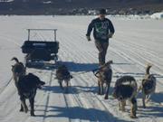 Terry et traineau a chiens ©EB