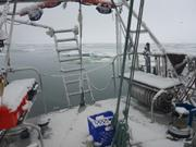 Neige du 21 juillet Grise Fiord ©EB