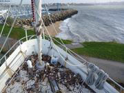 Vagabond au sec et face a la rade de Brest