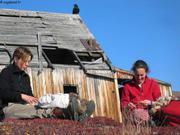 Heli et France filant laine boeuf musque