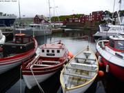 Ecotroll a Torshavn