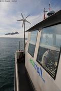 Ecotroll et brume groenlandaise