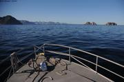 Vers Fjord Vejle