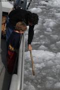 Robin tate la glace