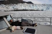 Sieste brash glacier Brede
