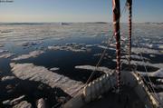 Debacle baie de Melville