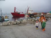 Cargo Royal Arctic Line Upernavik