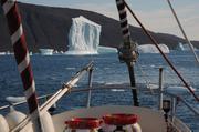 Beaucoup d icebergs au sud du Svartenhuk