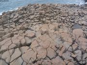 Orgue basaltique Qingnivik