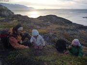 Beaucoup de myrtilles a Uummannaq