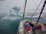 Iceberg nous rend visite au mouillage