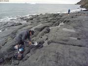 Coulee de basalte