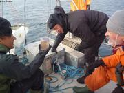 Premier prelevement plancton2