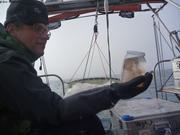 Anders et premier prelevement plancton