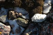 Pelotes et crottes
