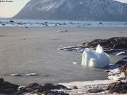 La mer commence a geler a Grise Fiord