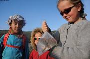 Petit poisson pour Ina Aurore et Leonie