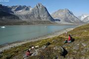 Pique-nique fjord Tasiilaq