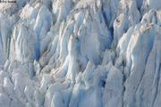 Glacier Bruckner fjord Petersen