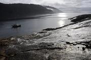 Mouillage fjord Tasilartik