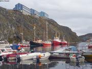Vagabond a Nuuk