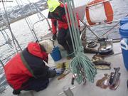 France et Clementine preparent les poissons