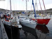 Pierre1er LadyDana et Vagabond a Ilulissat