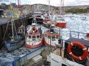 Port d Ilulissat ecombre