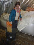 Aurore prepare aliments pour moutons
